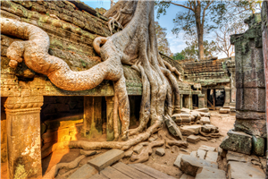 Discover the Ancient Angkor Kingdom Siem Reap – Cambodia